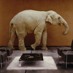 About-Patti-Elephant-in-Room